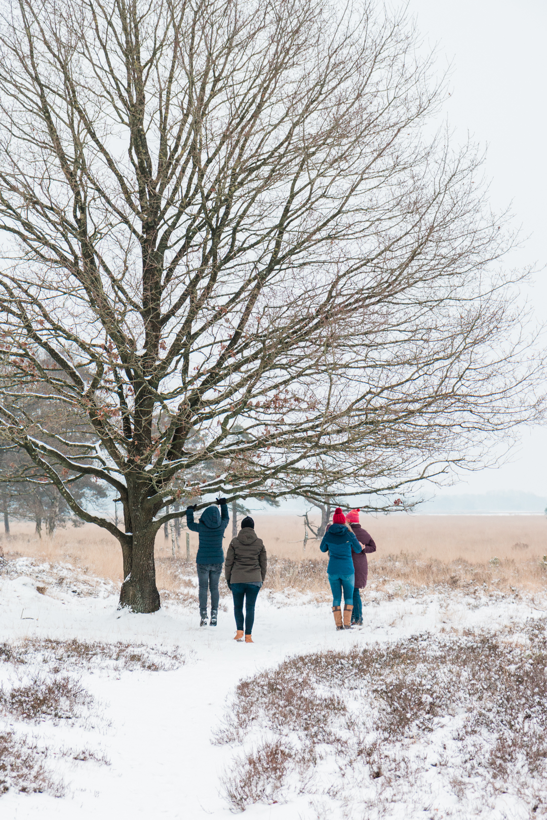 Onderneemsters in de sneeuw