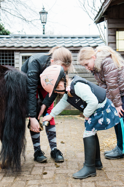 Kinderen poetsen een pony